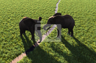 Elefantes por el río.