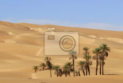 en el desierto en Umelma