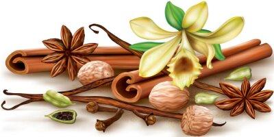 Póster Especias aromáticas secas