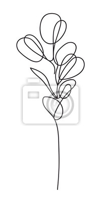 Póster Eucalyptus silver dollar branch continuous line drawing. One line . Hand-drawn minimalist illustration, vector.