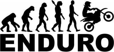 Evolución de Enduro