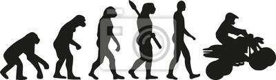 Evolución de Quad