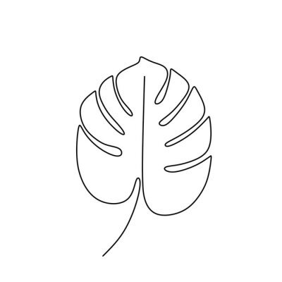 Póster Exotic monstera continuous one line drawing summer tropical leaf hand drawn on white background minimalist design