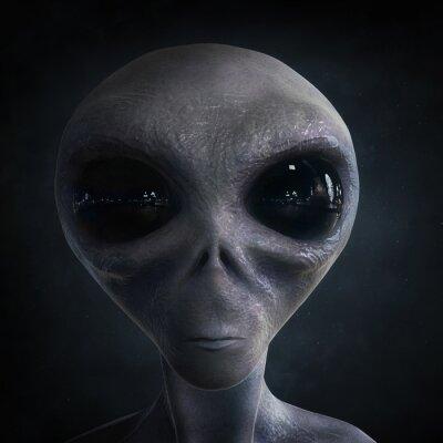 Póster extraterrestre
