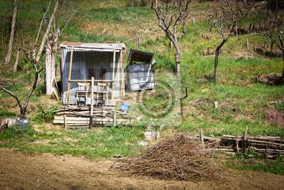 Fantástica villa en el campo, Toscana, Italia.