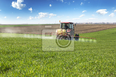 Farmer, fumigación de campo de trigo con sulfatadora