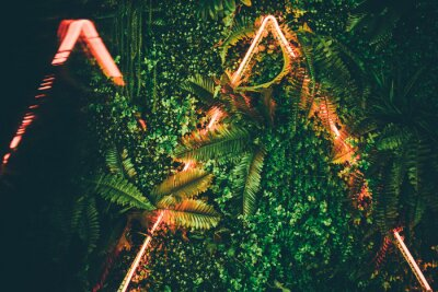 Póster Flat lay. Creative fluorescent color layout made of tropical leaves with neon light triangle .