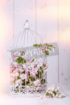 Póster Flor de Apple llena jaula antiguo sobre fondo de madera