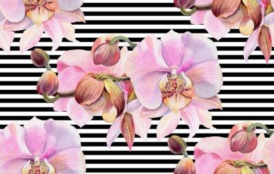 Póster Flores de acuarela Orquídeas rosadas
