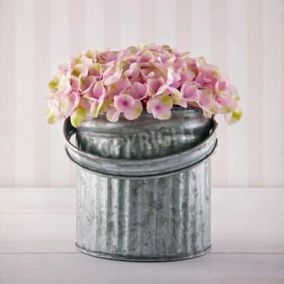 Póster Flores de hortensia de color rosa en un cubo de metal en fondo rayado de la vendimia