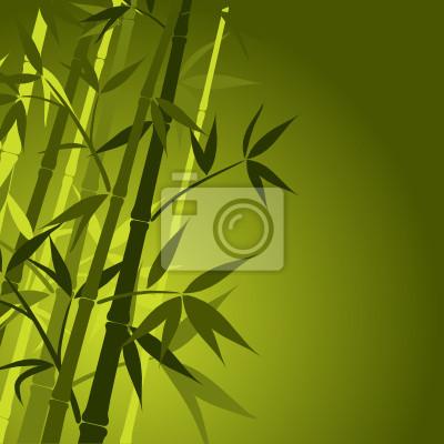 Póster Fondo de bambú, ilustración vectorial