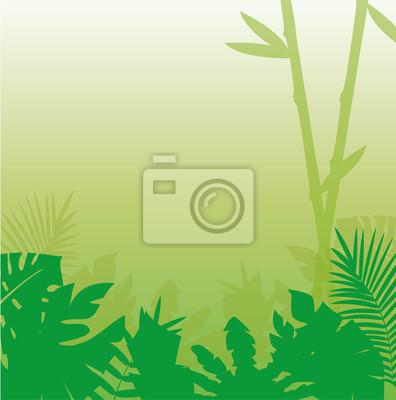fondo de la selva tropical Stock