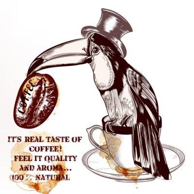 Póster Fondo o cartel del vector del café con el pájaro toucan dibujado mano h