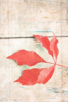 Póster Fondo sucio con hojas de color rojo
