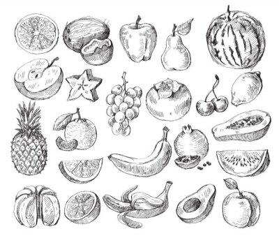 Póster fruta dibujado a mano