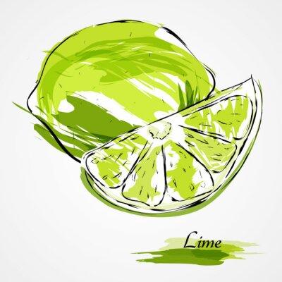 Póster frutos de limón