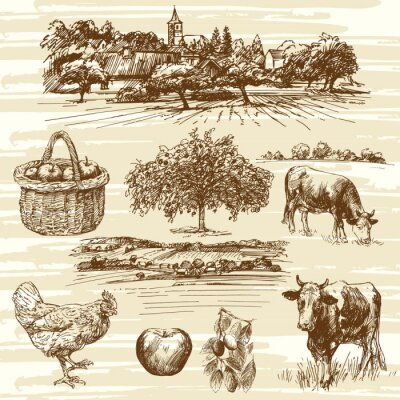 Póster Granja, cosecha, paisaje rural - conjunto dibujado a mano
