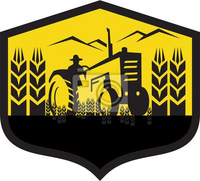 Granja del trigo de la cosecha del tractor