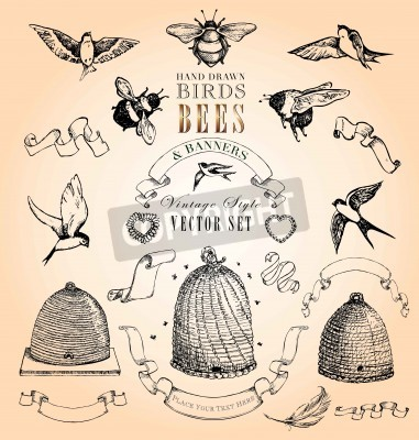 Póster Hand Drawn Birds, Bees and Banners Vintage Style Vector Set