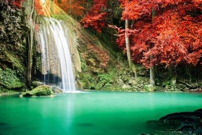 Póster Hermosa cascada en el bosque de otoño