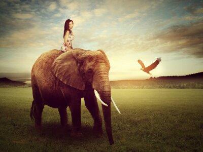 Póster Hermosa mujer sentada en un elefante