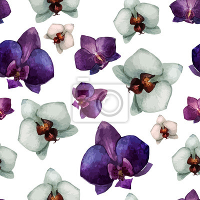 Hermosa orquídea flower2