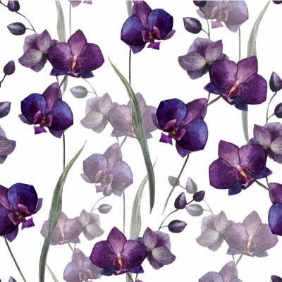 Hermosa orquídea Flower4