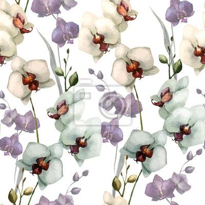 Hermosa orquídea flower5
