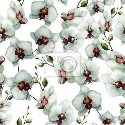 Hermosa orquídea flower6