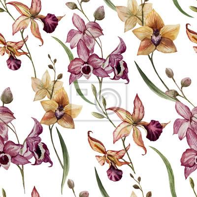 Hermosa orquídea flower8