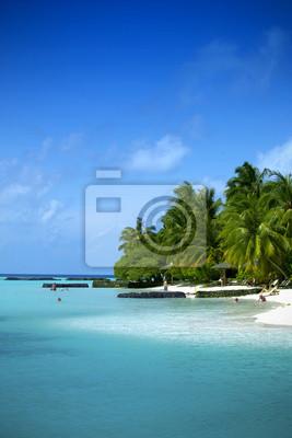 Hermosa playa en las Maldivas