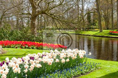 Hermosas flores de primavera en Parque Keukenhof en Holanda