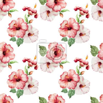 hibiscus4