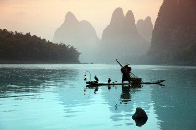 Póster Hombre chino de pesca con cormoranes aves