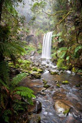 Póster Hopetoun Falls, una cascada aislada en el Otway Ranges, Australia