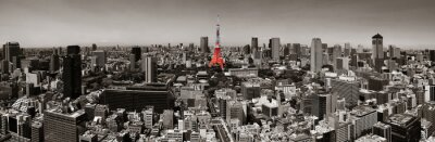 Póster Horizonte de Tokio