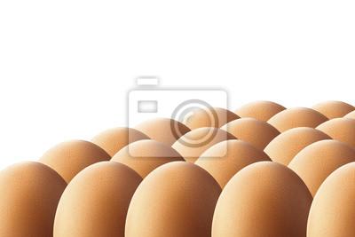 Huevos en el fondo blanco