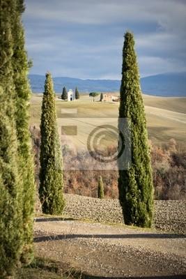 Iglesia entre pinos, Toscana (Italia).