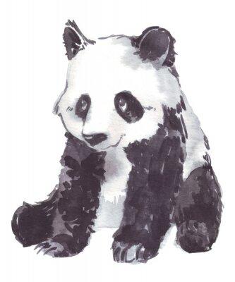 Ilustración Dibujo De Un Panda Carteles Para La Pared Pósters