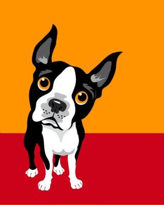 Póster ilustración divertida de Boston Terrier