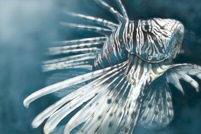 Póster Ilustración hecha con una tableta digital de pez escorpión peligroso,