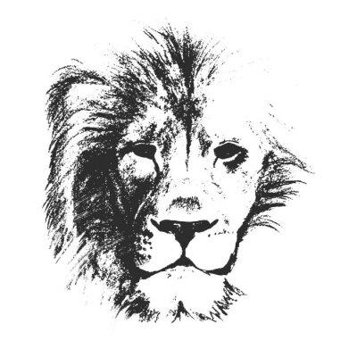 Póster ilustración vectorial