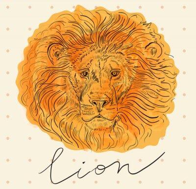 Póster Ilustración vectorial con la cabeza de león
