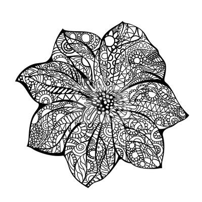 Ilustracion Vectorial Flor Dibujo Dibujado A Mano Blanco Negro
