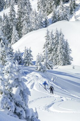 Póster Im Tourengeher verschneiten Tirol