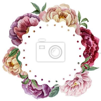 Image4 Vector acuarela