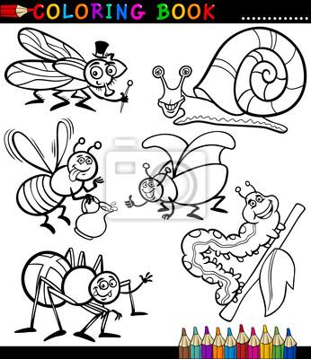 Insectos y bichos para coloring book carteles para la pared ...