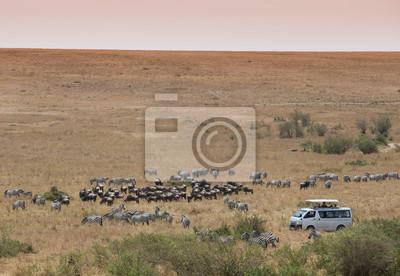 Jeep safari en Masai Mara Kenia