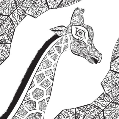 Póster Jirafa adulta hermosa. Dibujado a mano Ilustración de la jirafa ornamental. Aislado jirafa sobre fondo blanco. La cabeza de una jirafa ornamental