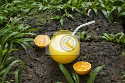 Jugo de naranja fresco y colorido en la piedra en el parque